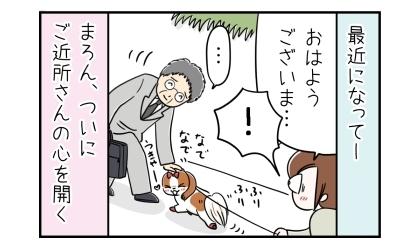 最近になって犬の散歩中、ご近所さんに会ったら犬の頭をなでてくれた。喜ぶ犬。ついにご近所さんの心を開く