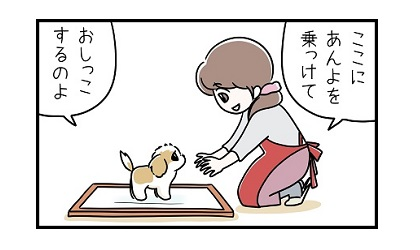 トイレのしつけe 4コマ犬漫画 ぷりんちゃんねる
