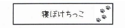 寝ぼけちっこ-0