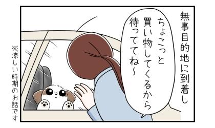 無事目的地に到着し、犬を車に留守番させて、ちょこっと買い物してくるから待っててね~(涼しい時期のお話です)