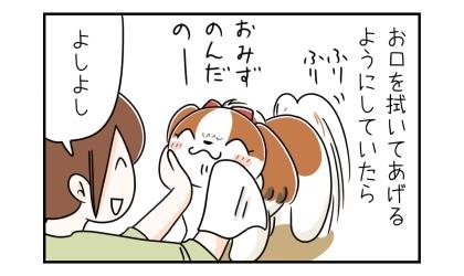 お口を拭いてあげるようにしていたら。よしよし、犬の口をタオルで拭いてあげる飼い主