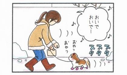 犬用レインブーツに挑戦! 3-3