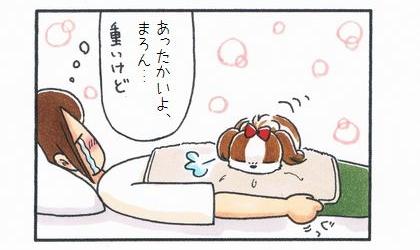 犬がお腹に毛布を掛けた飼い主の上で寝る。あったかいよ、重いけど