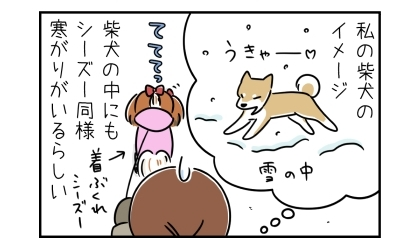 私の柴犬のイメージは雪の中を駆け回り…。柴犬の中にもシーズー同様寒がりがいるらしい。服を着た着ぶくれシーズー