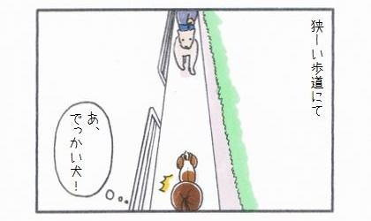 犬の散歩中、狭~い歩道にて。あ、でっかい犬!向こうから大きな犬がやってきた