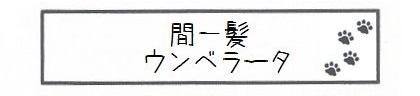 間一髪ウンベラータ-0