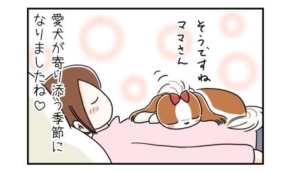 そうですねママさん、同じくそっと目を閉じる犬。飼い主の腹の上で。愛犬が寄り添う季節になりましたね