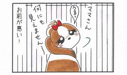 ゲートでガード-4
