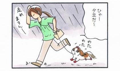 不足したお散歩-1