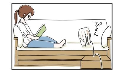 ソファの上で足を伸ばして座って本を読んでいたら、犬もソファに乗ってきた