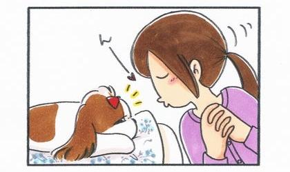 犬の手にキスをしようとする飼い主。その気配に気がついた犬