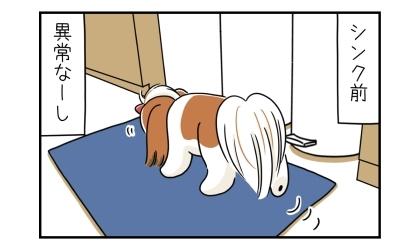 シンク前をウロウロする犬(食べ物が落ちていないか探している)。異常なーし(落ちてない)
