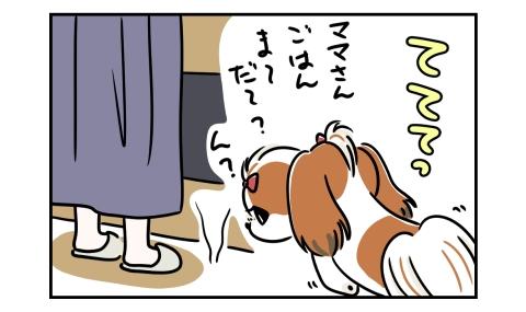 犬がごはんまだ?とやってきた。床の匂いに気づく。
