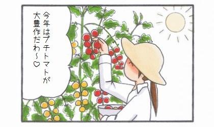 プチトマトLove -ママのトマト編--1